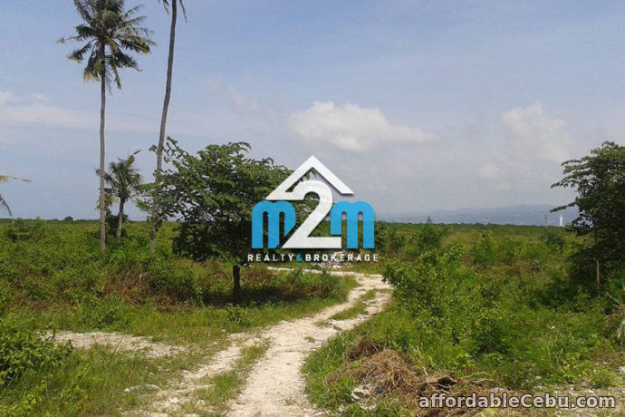 1st picture of Breeze View Subdivision(LOT ONLY) Bang-bang, Cordova, Cebu For Sale in Cebu, Philippines