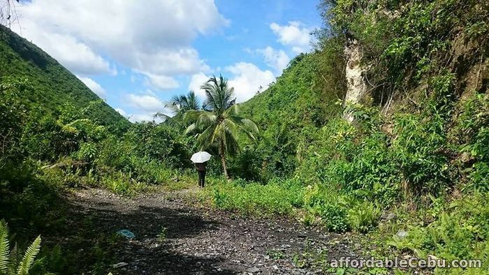 1st picture of Residential for sale in Minglanilla For Sale in Cebu, Philippines