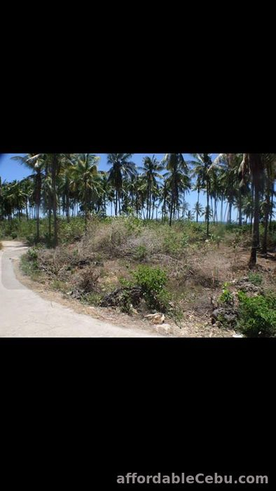 3rd picture of White sand beach lot in Bantayan Island (Atop-Atop). For Sale in Cebu, Philippines