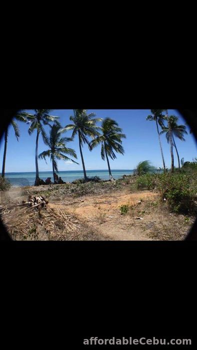 4th picture of White sand beach lot in Bantayan Island (Atop-Atop). For Sale in Cebu, Philippines