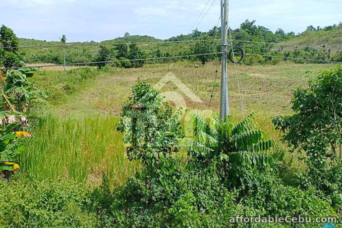 2nd picture of Eden Valley Estate Subdivision(LOT ONLY)Guadalupe Bogo City,Cebu For Sale in Cebu, Philippines