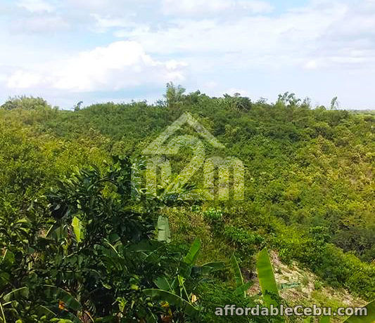 3rd picture of Lot For Sale - Quirina Heights(LOT ONLY) Upper Casili, Mandaue City, Cebu For Sale in Cebu, Philippines