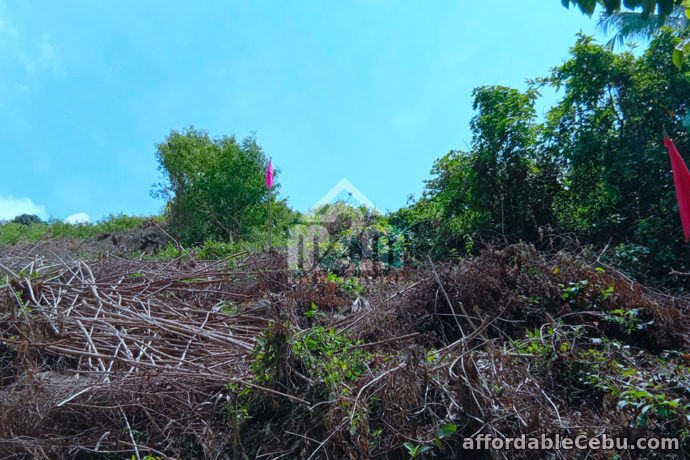 3rd picture of Lot For Sale - Woodridge Subdivision(LOT ONLY) Lower Cambayog, Compostela, Cebu For Sale in Cebu, Philippines