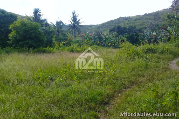 5th picture of Lot For Sale - Khaizelle Subdivision(LOT ONLY) Brgy. Sabang Danao, Cebu City For Sale in Cebu, Philippines