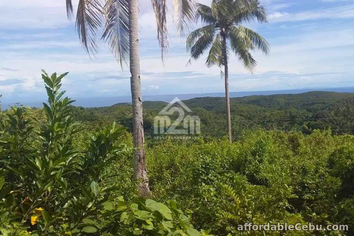 4th picture of Daniel's Peak(LOT ONLY) Bagalnga Compostela, Cebu City For Sale in Cebu, Philippines