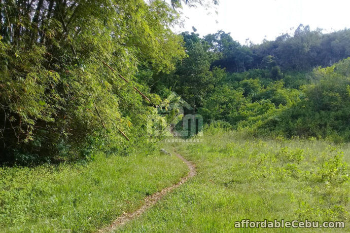 4th picture of Lot For Sale - Khaizelle Subdivision(LOT ONLY) Brgy. Sabang Danao, Cebu City For Sale in Cebu, Philippines