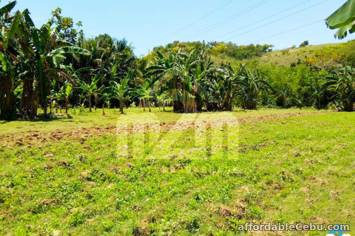 1st picture of Kardava Hillside Extension(LOT ONLY)  Tabunoc 2, Maslog, Danao City Cebu For Sale in Cebu, Philippines