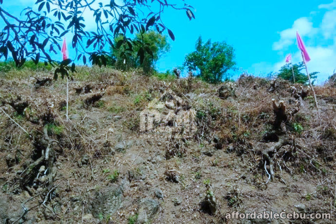 2nd picture of Lot For Sale - Woodridge Subdivision(LOT ONLY) Lower Cambayog, Compostela, Cebu For Sale in Cebu, Philippines