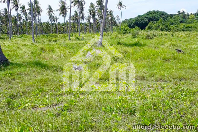 4th picture of Beach Lot For Sale - Sta. Monica Residences(BEACHLOT) Victorias, San Remigio Cebu For Sale in Cebu, Philippines