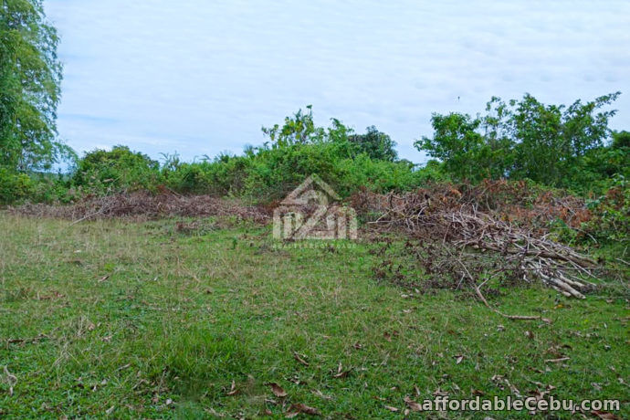 3rd picture of Daniel's Peak(LOT ONLY) Bagalnga Compostela, Cebu City For Sale in Cebu, Philippines