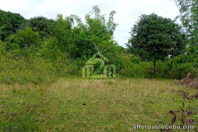 2nd picture of Lot For Sale - Daniel's Peak(LOT ONLY) Bagalnga Compostela, Cebu City For Sale in Cebu, Philippines