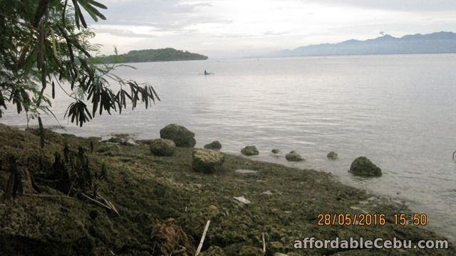 5th picture of Beautiful Beachfront Lot at Samal Island for Sale. Only P2.9 M o9357422292 gl For Sale in Cebu, Philippines
