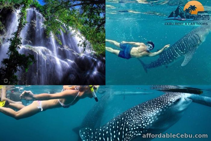 5th picture of Affordable Cebu Rent A Car Tours For Rent in Cebu, Philippines