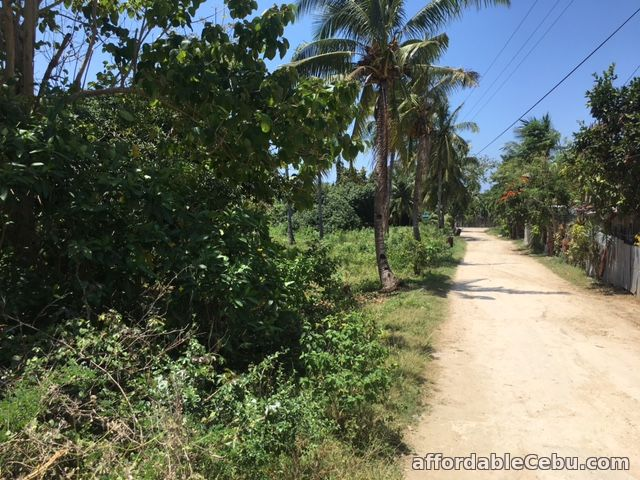 5th picture of Titled Land in Bakhawan Daan Bantayan Corner lot For Sale in Cebu, Philippines