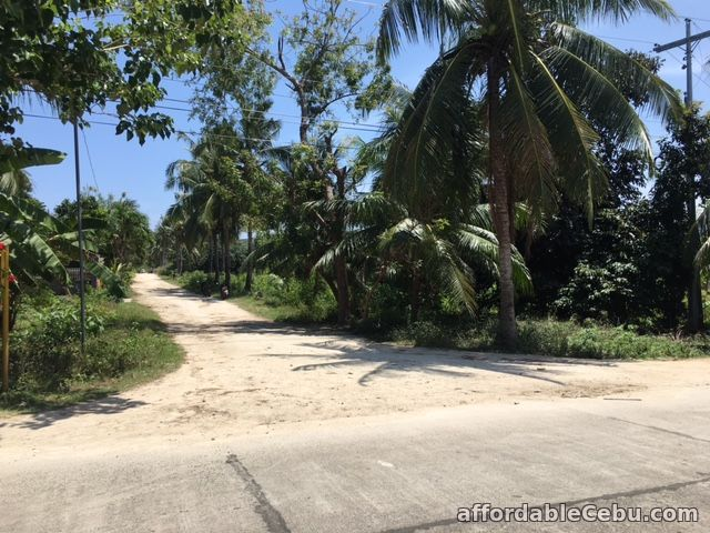 4th picture of Titled Land in Bakhawan Daan Bantayan Corner lot For Sale in Cebu, Philippines