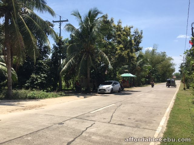 3rd picture of Titled Land in Bakhawan Daan Bantayan Corner lot For Sale in Cebu, Philippines