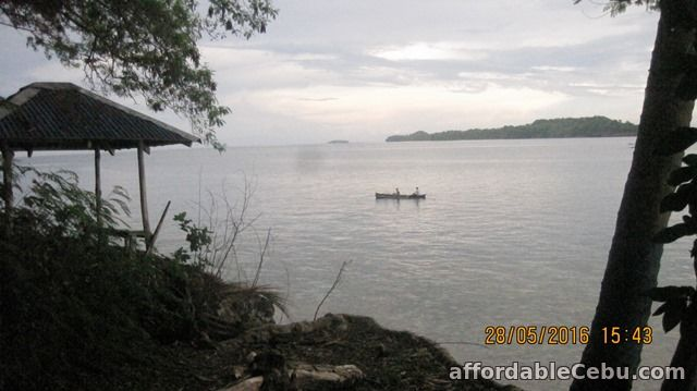 3rd picture of Beautiful Beachfront Lot at Samal Island for Sale. Only P2.9 M o9357422292 gl For Sale in Cebu, Philippines