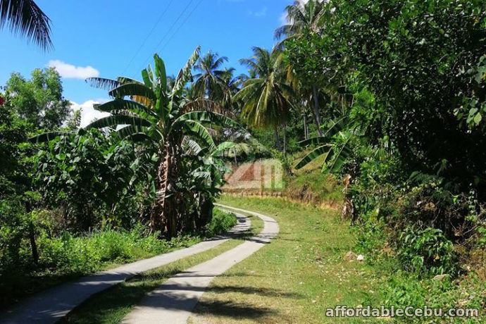 3rd picture of Grand Alv. Ranch(LOT ONLY) Carmen Cebu For Sale in Cebu, Philippines