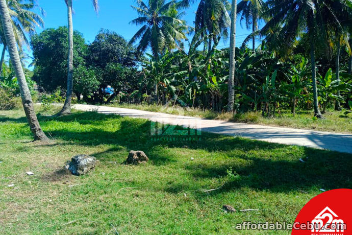 5th picture of Orland Plains(LOT ONLY) Cogon, Maslog Danao, Cebu City For Sale in Cebu, Philippines