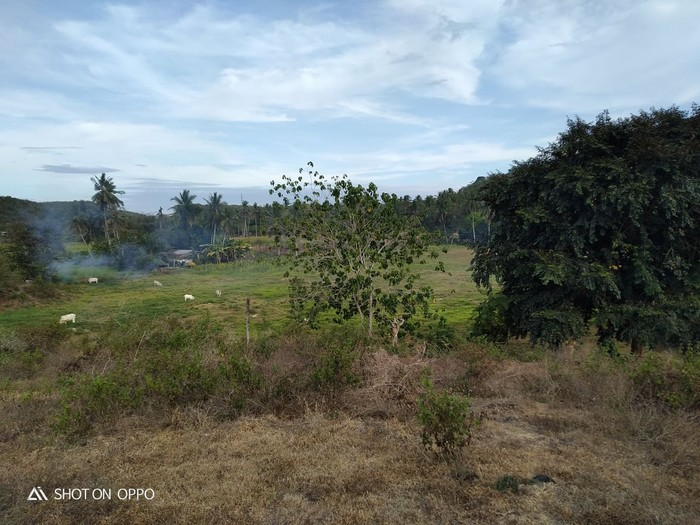 1st picture of 2.2 Hectare Farm Land at Compostela, Cebu For Sale in Cebu, Philippines