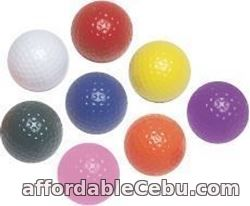 1st picture of Miniature Golf Course Supplies Looking For in Cebu, Philippines
