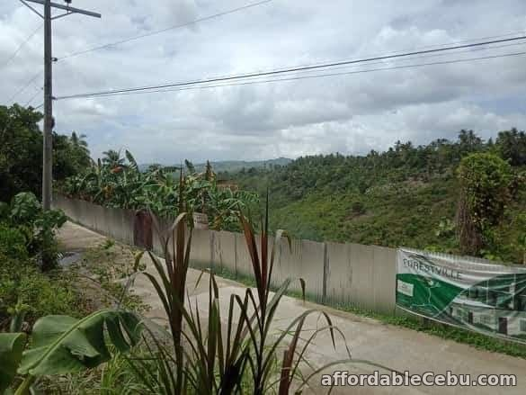 4th picture of forestville subdivision For Sale in Cebu, Philippines