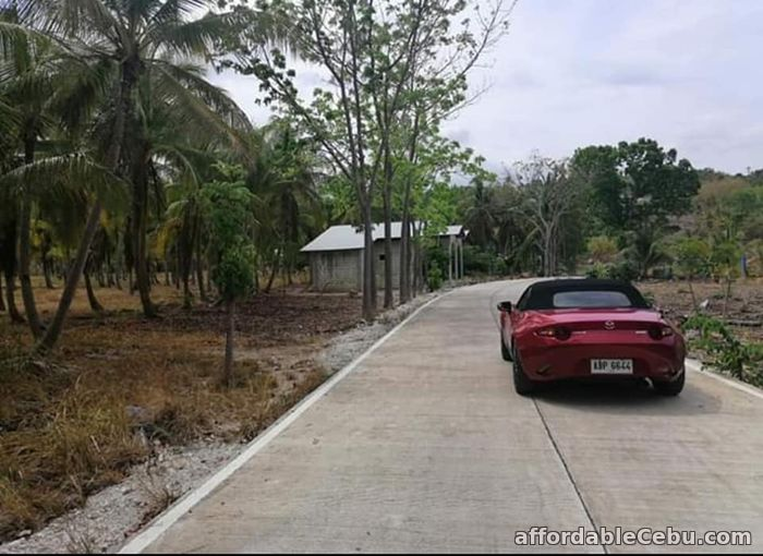 2nd picture of Agri/residential lot -1.3 hectare at ₱300 per sqm in Santander Cebu OK TRADE IN For Sale in Cebu, Philippines
