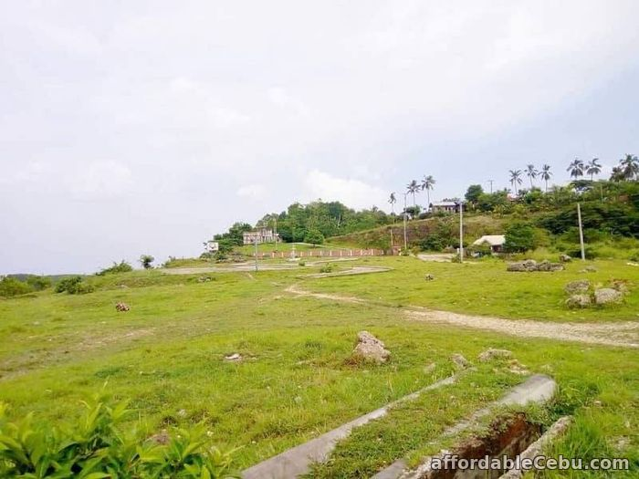 2nd picture of Rush lot for sale in Maghaway Talisay City Cebu For Sale in Cebu, Philippines