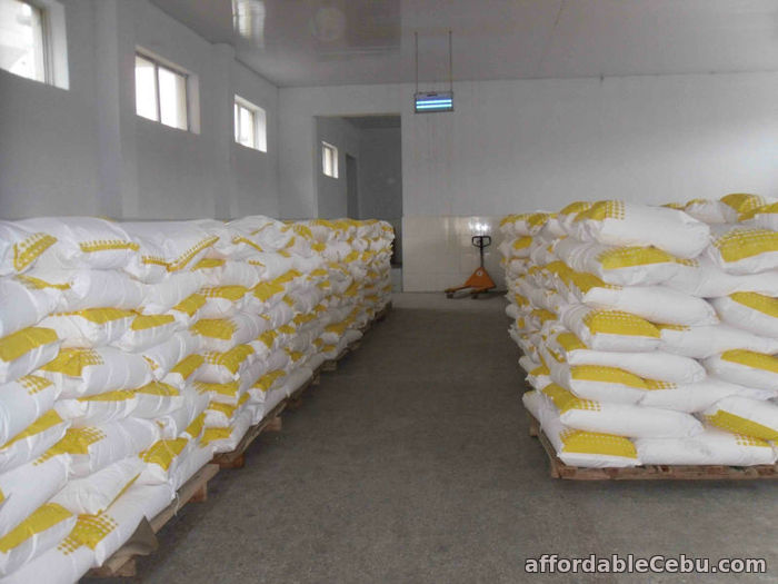 2nd picture of Wholesale High Quality Camel Powder Milk Supply For Sale in Cebu, Philippines