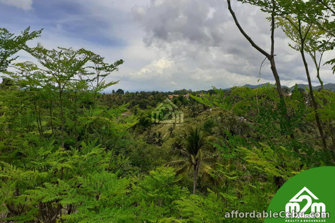 5th picture of Marian Residences(LOT ONLY) Vito, Minglanilla Cebu For Sale in Cebu, Philippines