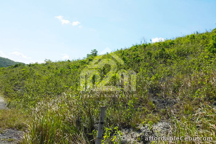 4th picture of Mountain Breeze(LOT ONLY) Sandayong Sur, Danao City For Sale in Cebu, Philippines