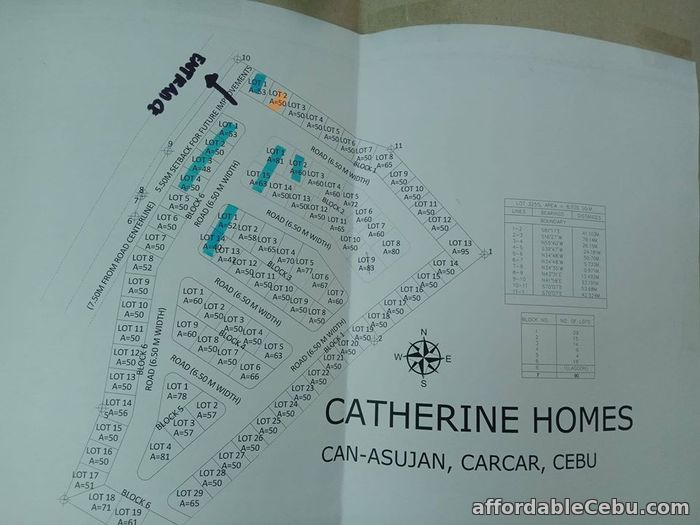 5th picture of Catherine Homes(LOT ONLY) Can-Asujan, Carcar City, Cebu For Sale in Cebu, Philippines