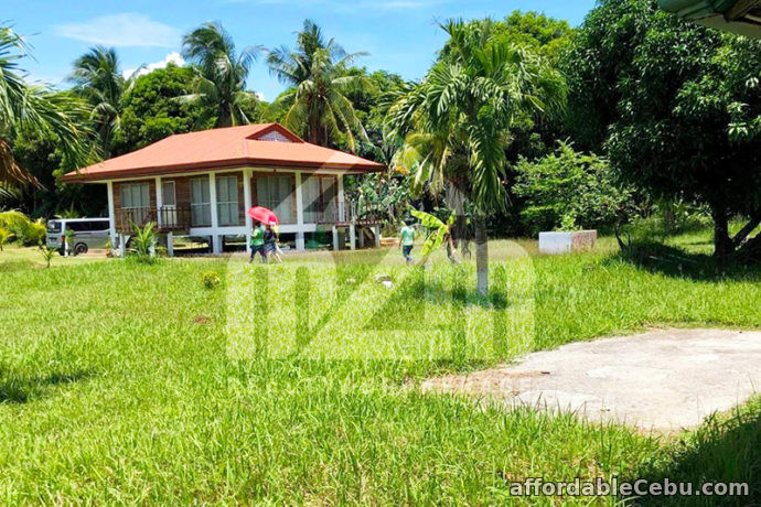 2nd picture of Del Carmen Sands(BEACH LOT RESIDENTIAL) San Remigio, Cebu For Sale in Cebu, Philippines