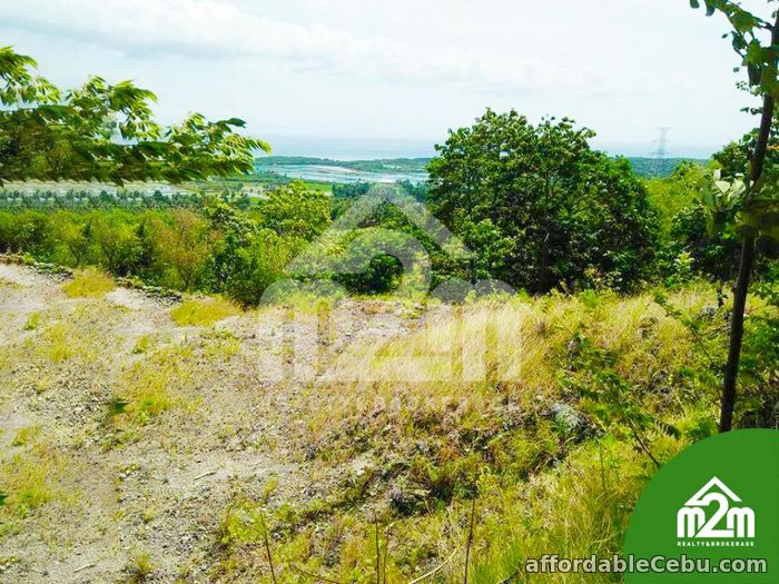 2nd picture of Top Ville Subdivision(LOT ONLY) Can-asujan,Carcar, Cebu For Sale in Cebu, Philippines