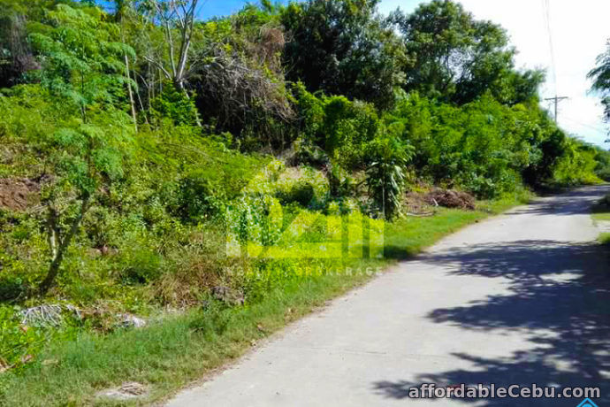 3rd picture of Vista Del Mari(LOT ONLY) Tamiao, Compostela, Cebu City For Sale in Cebu, Philippines
