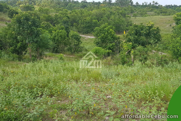3rd picture of La Verna Residences(LOT ONLY) Brgy. Can-asujan, Carcar City, Cebu For Sale in Cebu, Philippines