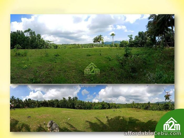 3rd picture of San Isidro Enclave(LOT ONLY) Calidngan, Carcar City, Cebu For Sale in Cebu, Philippines