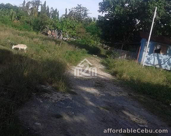 2nd picture of Villa Aser Subdivision(LOT ONLY) Litob Kalawisan, Lapu Lapu, Cebu, Philipines For Sale in Cebu, Philippines