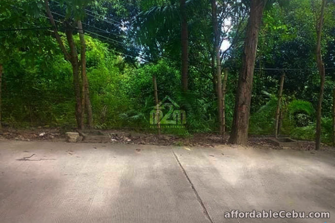 4th picture of Buena Vida Heights(LOT ONLY) Cambanay Danao, Cebu City For Sale in Cebu, Philippines