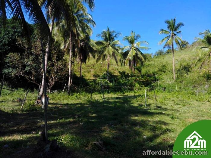 1st picture of Mikaela Land Subdivision(LOT ONLY) Bagalnga,Compostela,Cebu,Philipines For Sale in Cebu, Philippines