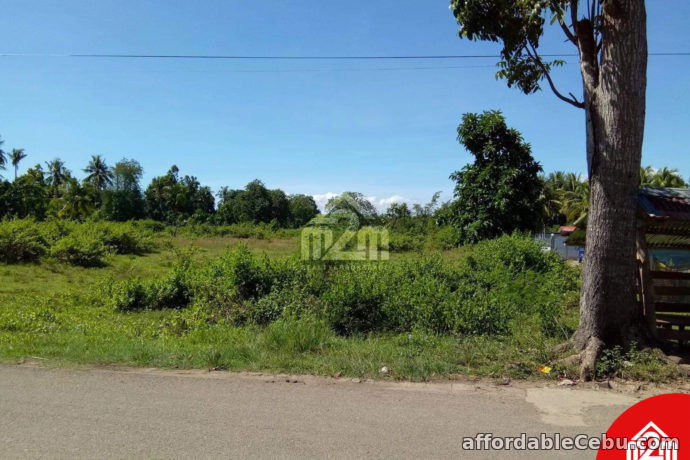 4th picture of Erizo De Mar Subdivision(LOT ONLY) Brgy. Tuyom, Carcar City, Cebu For Sale in Cebu, Philippines