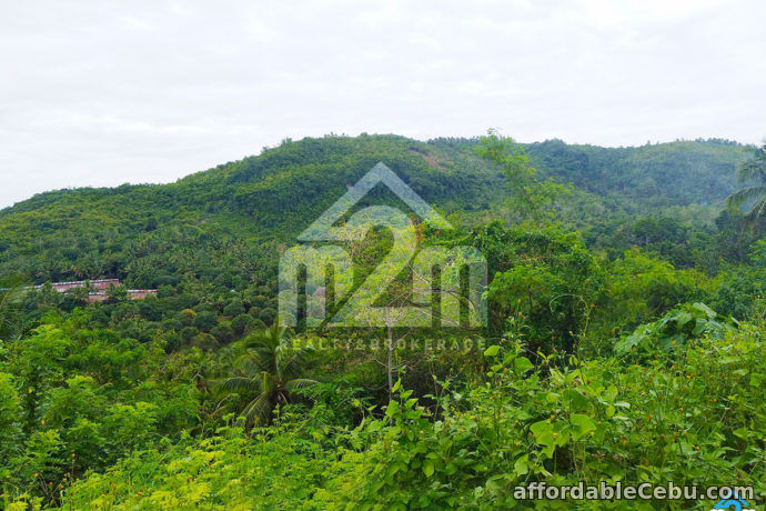 1st picture of Monte Vista Subdivision(LOT ONLY) Basak, Compostela Cebu For Sale in Cebu, Philippines