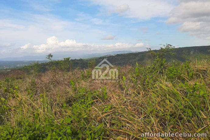 1st picture of Summerscent Estate(LOT ONLY) Pitalo, San Fernando, Cebu City For Sale in Cebu, Philippines