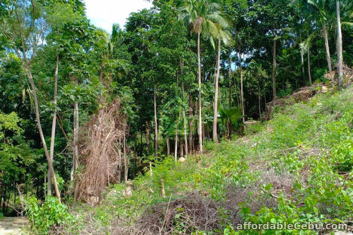 4th picture of Vinnare Heights Subdivision(LOT ONLY) Basak Compostela, Cebu For Sale in Cebu, Philippines