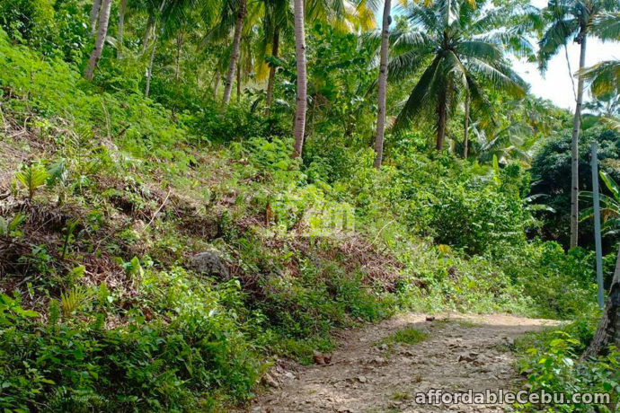 5th picture of Vinnare Heights Subdivision(LOT ONLY) Basak Compostela, Cebu For Sale in Cebu, Philippines