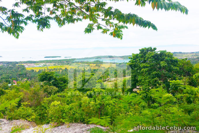 3rd picture of Mountain Tops Subdivision(LOT ONLY) Bonsai Bolinawan, Carcar For Sale in Cebu, Philippines