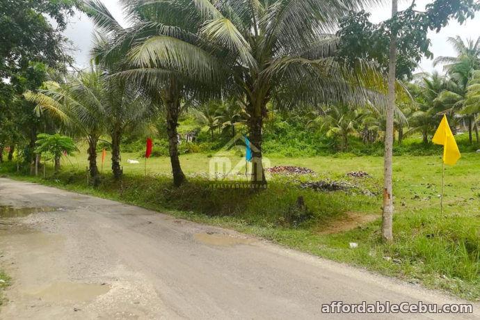 4th picture of Danrio Grande Subdivision(LOT ONLY) Sitio Lupa, Buenavista, Carcar City For Sale in Cebu, Philippines