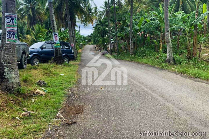 2nd picture of Zoilon Farm Ville(LOT ONLY) Ipil Carmen, Cebu City For Sale in Cebu, Philippines