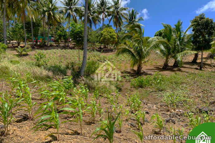2nd picture of North Meadows Subdivision(LOT ONLY) Carmen, Cebu City For Sale in Cebu, Philippines