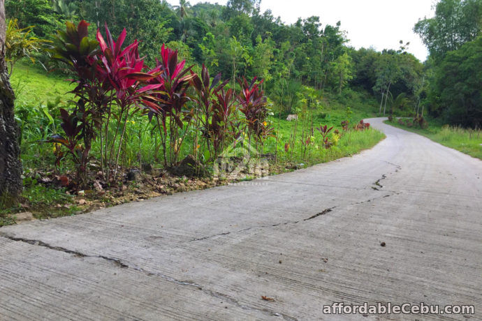 3rd picture of Vinnare Heights Subdivision(LOT ONLY) Basak Compostela, Cebu For Sale in Cebu, Philippines